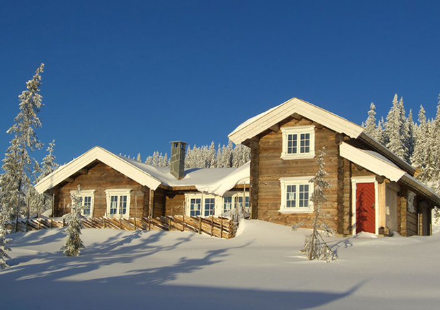 Norwegian style log home